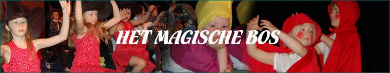 Banner_MagischeBos